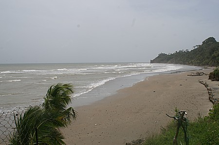 Trinidad Beach Review From Outdoor Trinidad The Site For