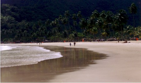 maracas morning.jpg (109156 bytes)