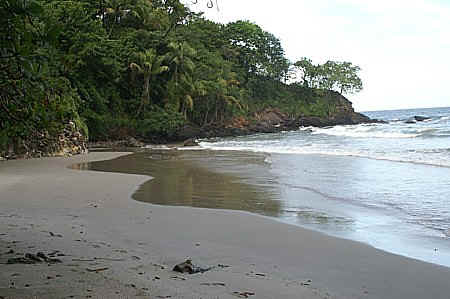 to delma beach on trinidad north coast after blanchisseuse